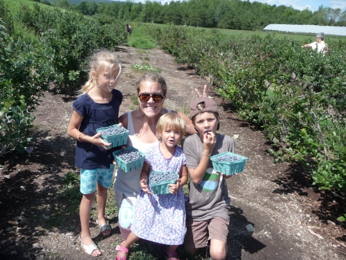 Blueberry picking with Sara