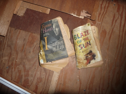 Books we found stuffed in the insulation! Tempestuous!